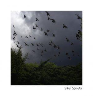 Sibel SUNAY